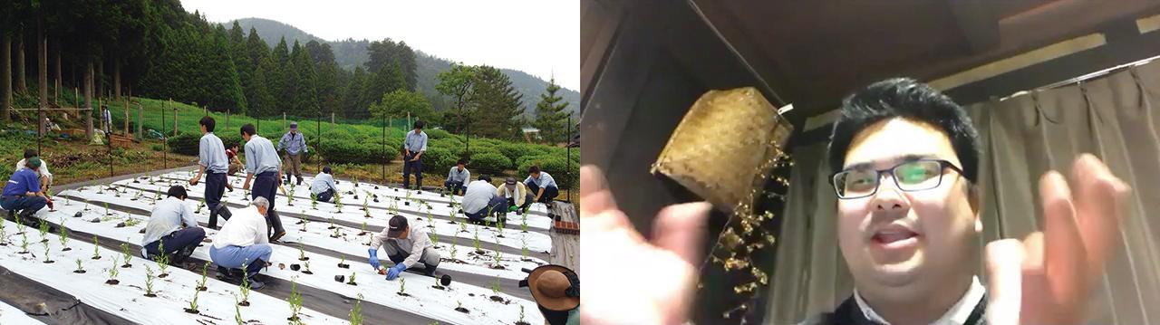 左:地域住民と八日市南高校の生徒が紫草の苗植えを行う様子 / 右:報告時の前川さん